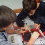 Schweineaugen sezieren im Biologieunterricht, Klasse 8b